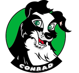 Conrad the Collie