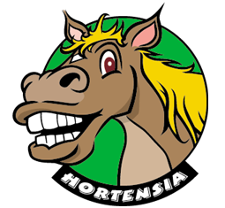 Hortensia the Horse